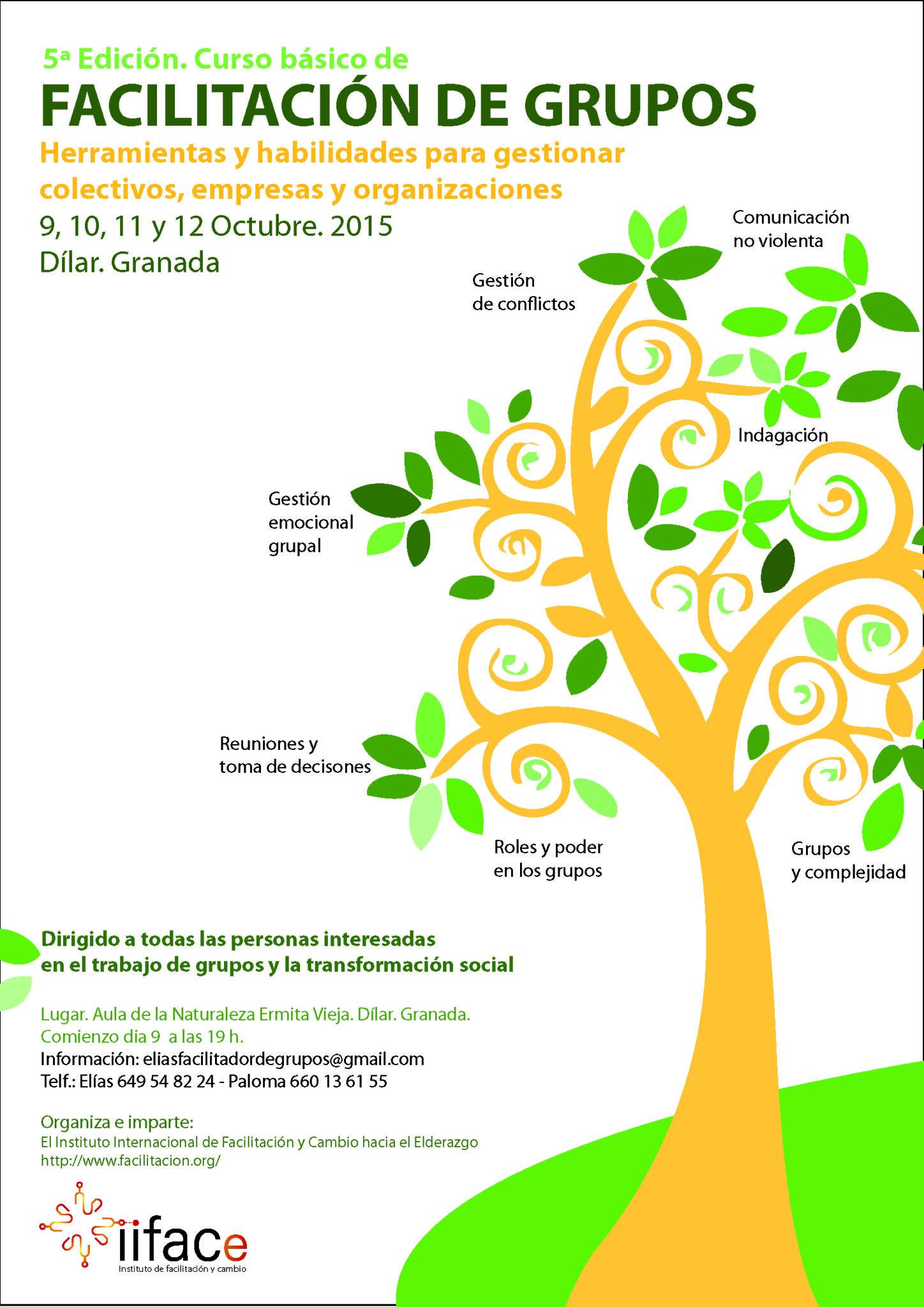 Curso IIFAC-E Granada 9-12 oct'15